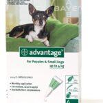 Advantage Pipeta Perros Hasta De 4 Kg